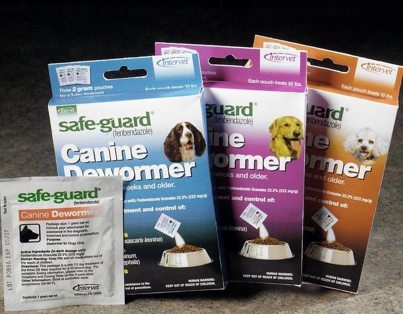 Deworming canine
