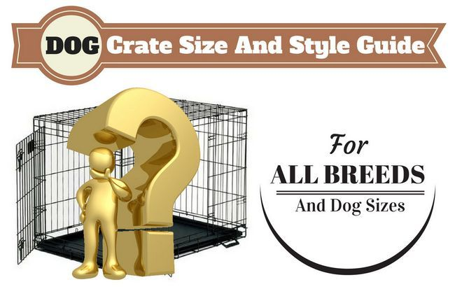 What size dog crate should you get and which type is best?