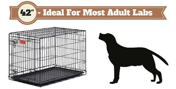 42 inch dog crate next to a labrador silhouette on white background