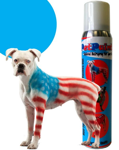 You can paint your pooch with dog paint, but should you?