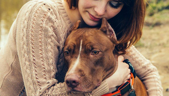 You`ll Never Guess What These Pit Bulls Did to Avoid Euthanasia